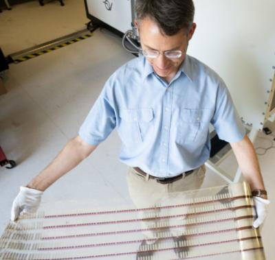 El profesor de Física Paul Dastoor, con la impresión de tiras para medir la glucosa. (Foto Universidad de Newcastle en Australia Reuters)